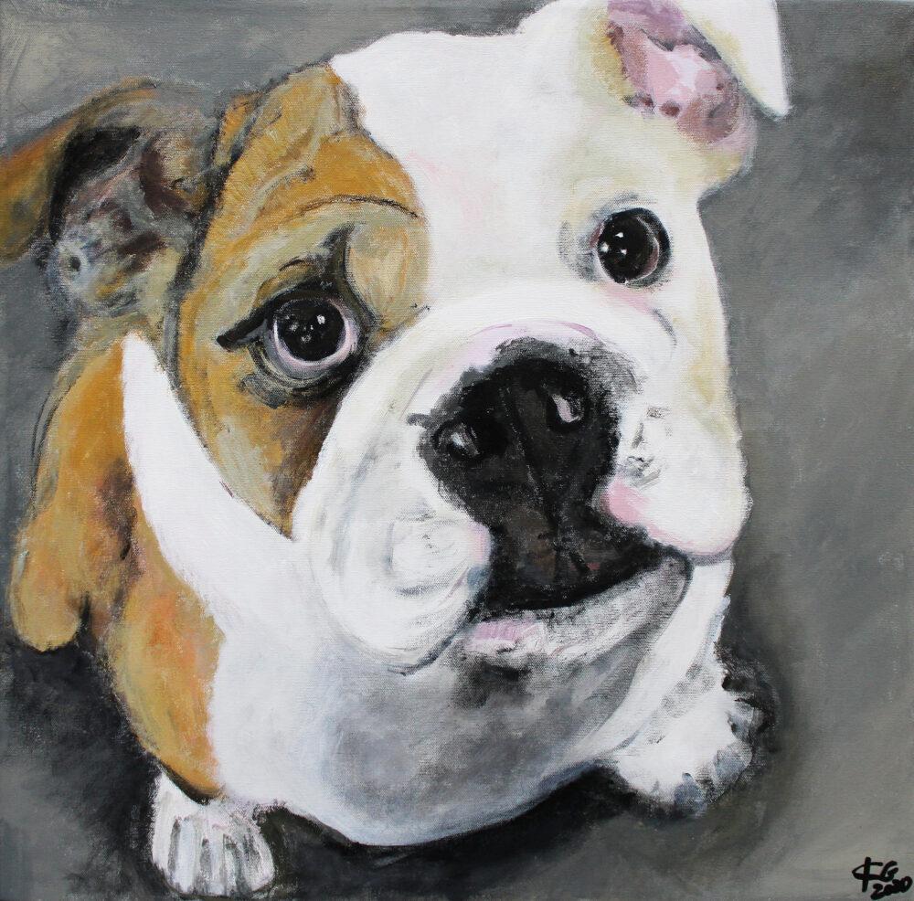 Gemälde Bulldogge, Hundeportrait, Malerei, Karin Greife, Kunst, Hunde malen, Zeichnung, Bulldoggen, Züchtung