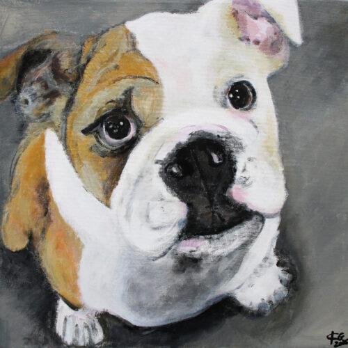 Gemälde Bulldogge